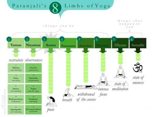 Eight Limbs